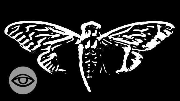 cicada3310