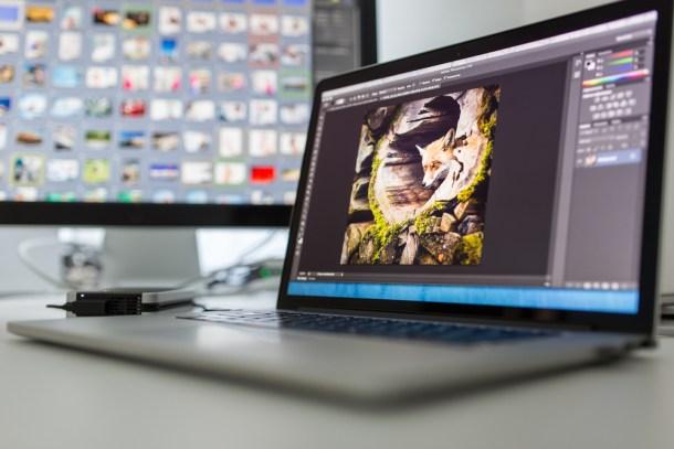 l i g h t p o e t | Shutterstock