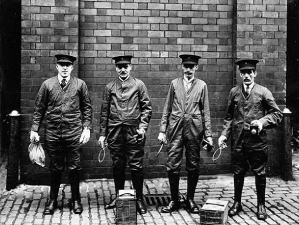 V0030482 Liverpool Port Sanitary Authority rat-catchers
