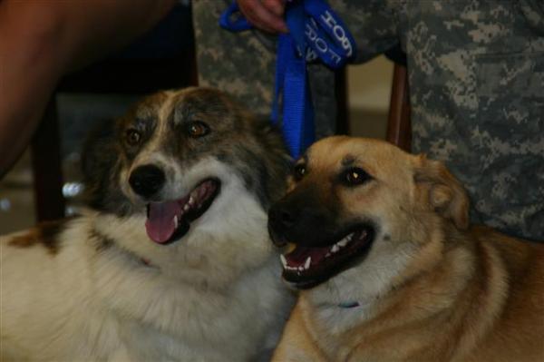 Rufus y Target sobrevivieron a la explosión; pero Sasha tuvo que ser sacrificada, sus heridas eran demasiado graves.