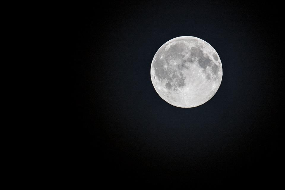 Luna del lobo
