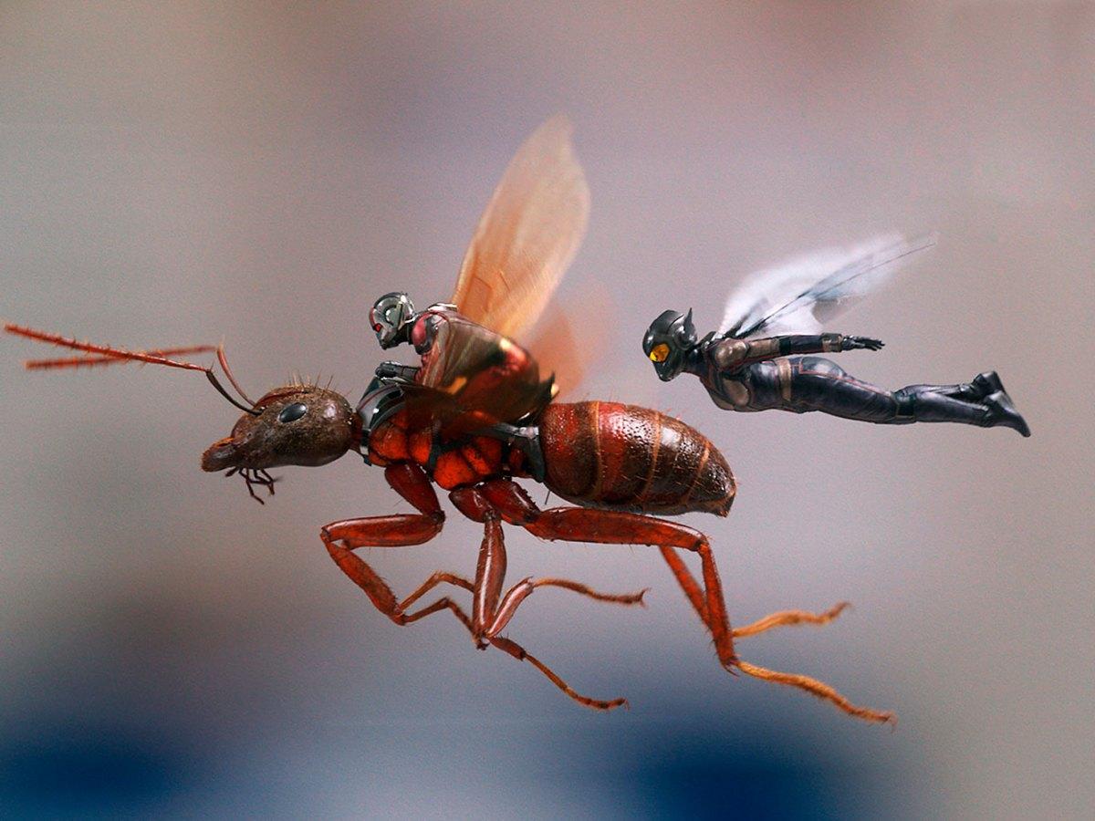 ant-man y la avispa crítica