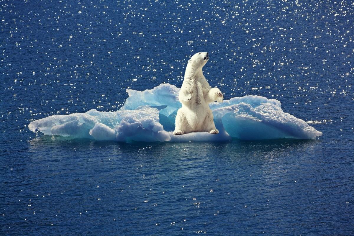 Cambio Climatico Facebook