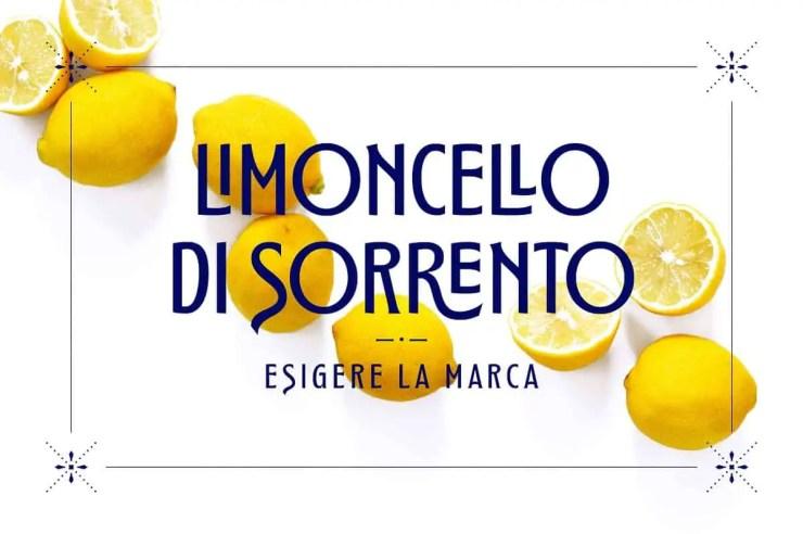 Montagna LTD