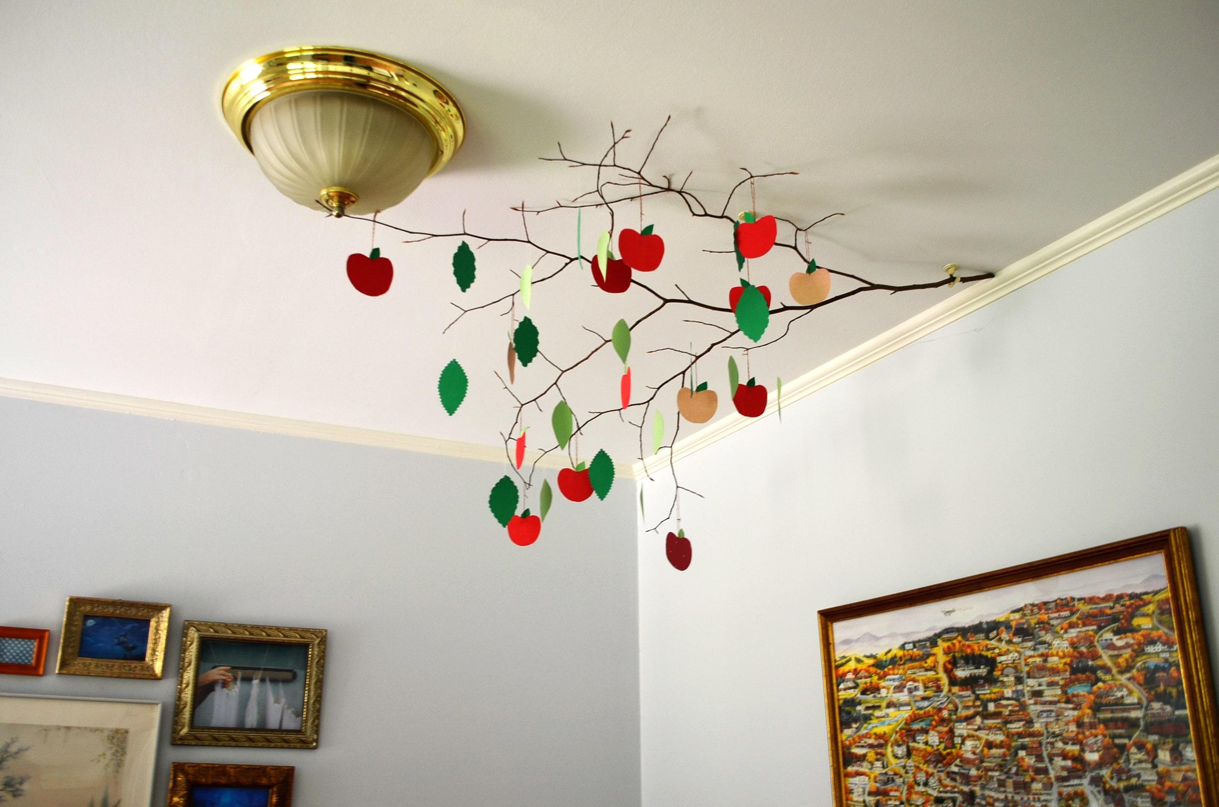 Unique Dining Room Ideas