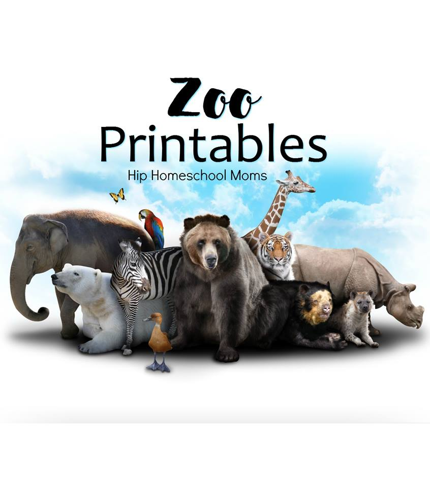 hight resolution of Zoo Related Printables   Hip Homeschool Moms