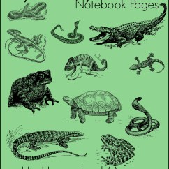 Venn Diagram Of Reptiles And Amphibians 97 Subaru Impreza Stereo Wiring Reptile Amphibian Notebook Pages Hip Homeschool Moms