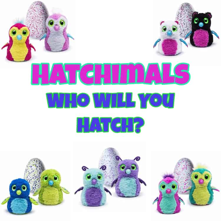 Hatch A Whole World Of Hatchimals Colleggtibles October