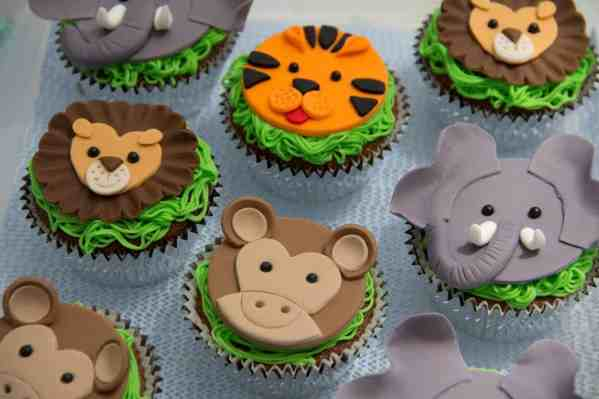 Safari Themed cup cakes - Jungle Themed cupcakes