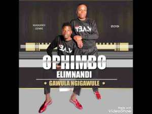 Mp3 Download OPHIMBO ELIMNANDI FT NCWASIMENDE CELA UKISS