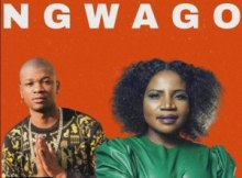Prince Benza Ngwago Lyrics ft Makhadzi Mp3 Download Fakaza