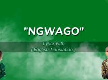 Download Mp3 Prince Benza ft Makhadzi - Ngwago Lyrics (with English Translation)
