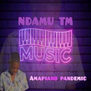 NDAMU TM, Orinea & Andy De Dj – This Is We Celebrate Amapiano Mp3 Download Fakaza