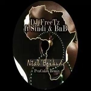 DJ Freetz, Sindi, BNB – Ntab' Ezikude (Afro-Cafe)