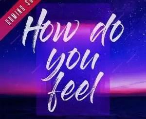 DJ Mshega - How Do You Feel Ft. Ziyon