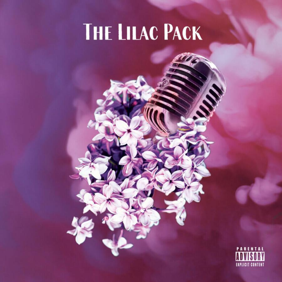 vsteeze & Funky DL - The Lilac Pack EP