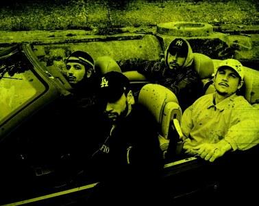 showcase s-crew