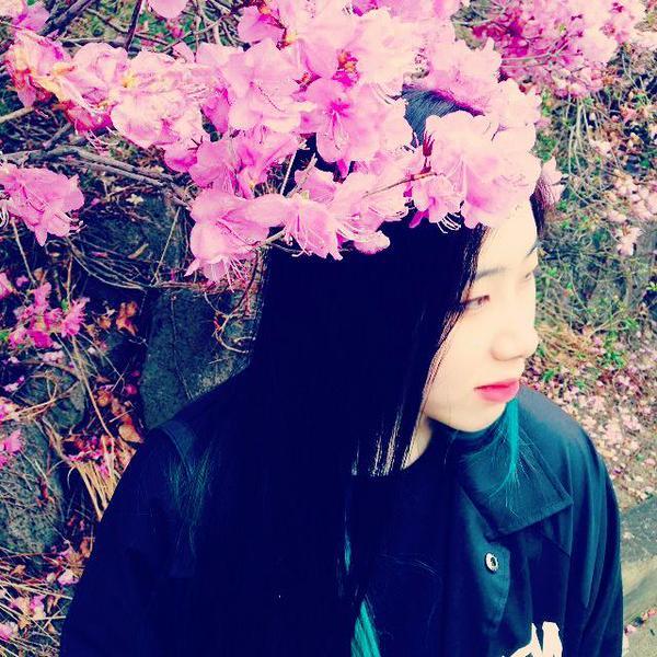 Choi Sam