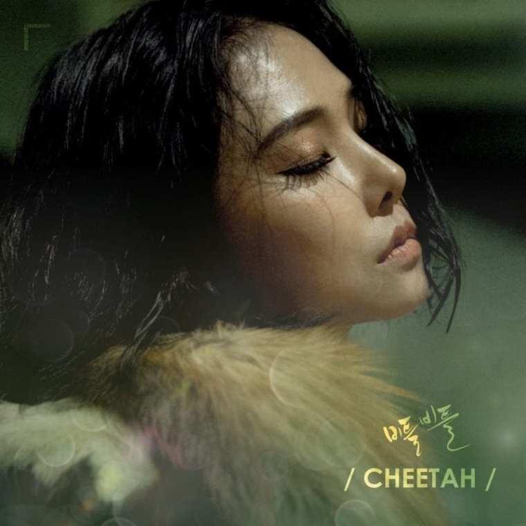 Cheetah - Stagger (cover art)