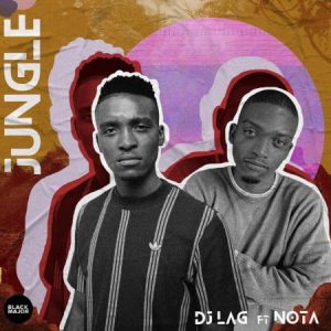 Dj Lag – Jungle Ft. Nota Hiphopza 300x300 - Dj Lag – Jungle Ft. Nota