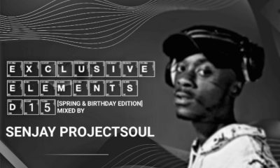 EXCLUSIVE ELEMENTS D15 - Senjay Projectsoul – Exclusive Elements D15 (Spring & Birthday Edition)