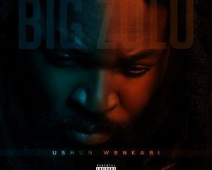 download big zulu ushun wenkabi album 300x300 Hip Hop More 13 - Big Zulu – Usuphephile