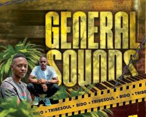 Tribesoul Bido Vega – General Sounds mp3 download zamusic Hip Hop More 1 - Tribesoul & Bido Vega – Old School Flavour (Tech Feel)