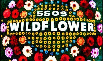 5 Seconds of Summer Wildflower scaled Hip Hop More - 5 Seconds of Summer – Wildflower
