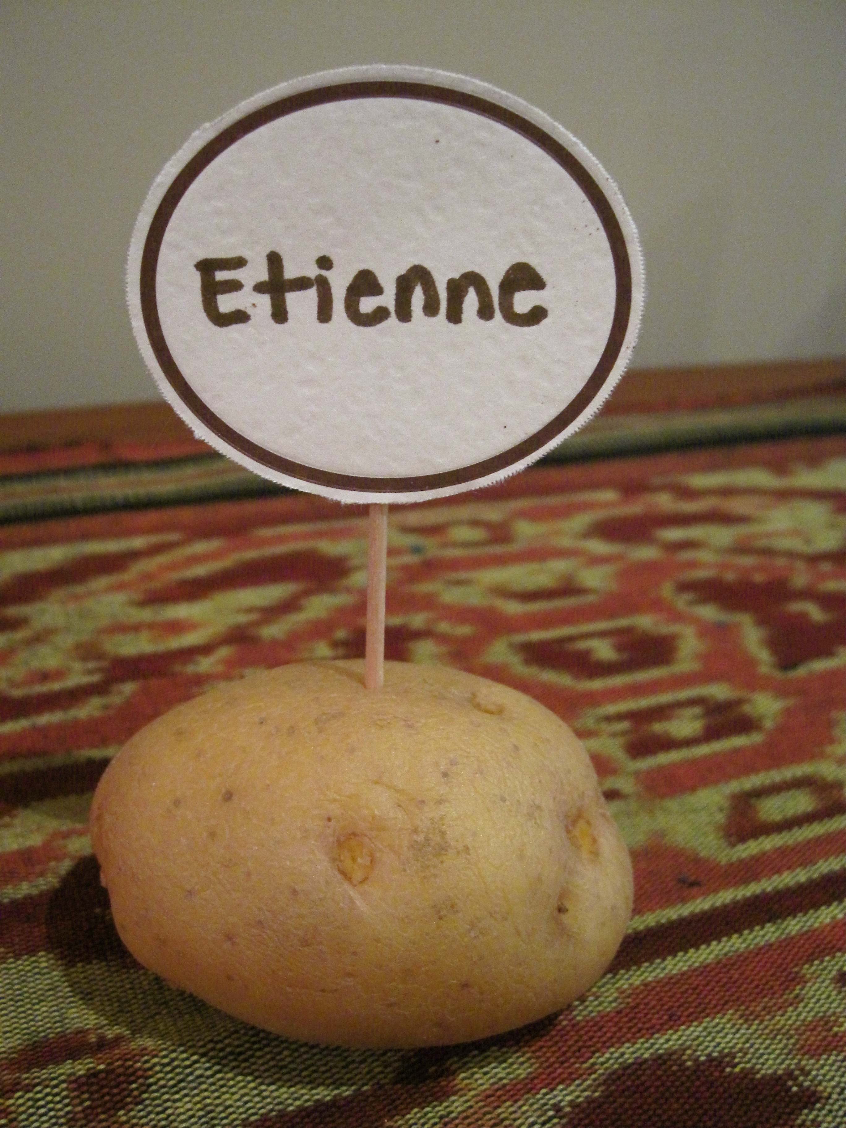 Hip Tip Potato Place Card Holders Stylish Spoon
