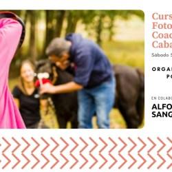 curso de fotografia y coaching con caballos alumnos fotografiando