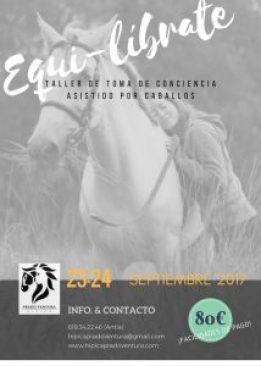 Terapia y coaching personal con caballos en Coruña