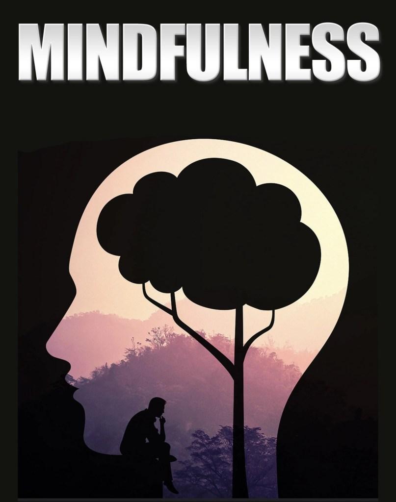 que es el mindfulness