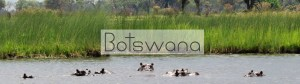 reisinfo Botswana