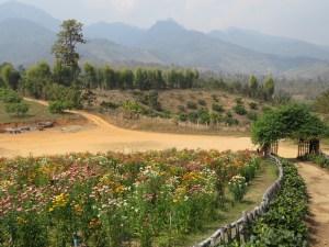 Omgeving Pai Noord-Thailand