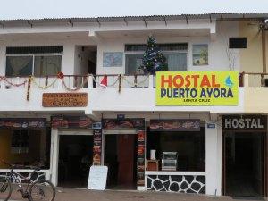Hostal Puerto Ayora Santa Cruz Galapagos