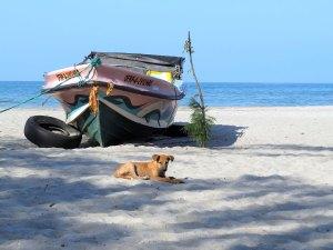 Kust bij Jaffna Sri Lanka