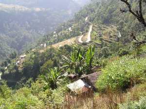 Darjeeling Oost-India