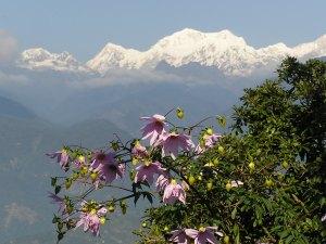 Het himalaya gebergte in Sikkim India