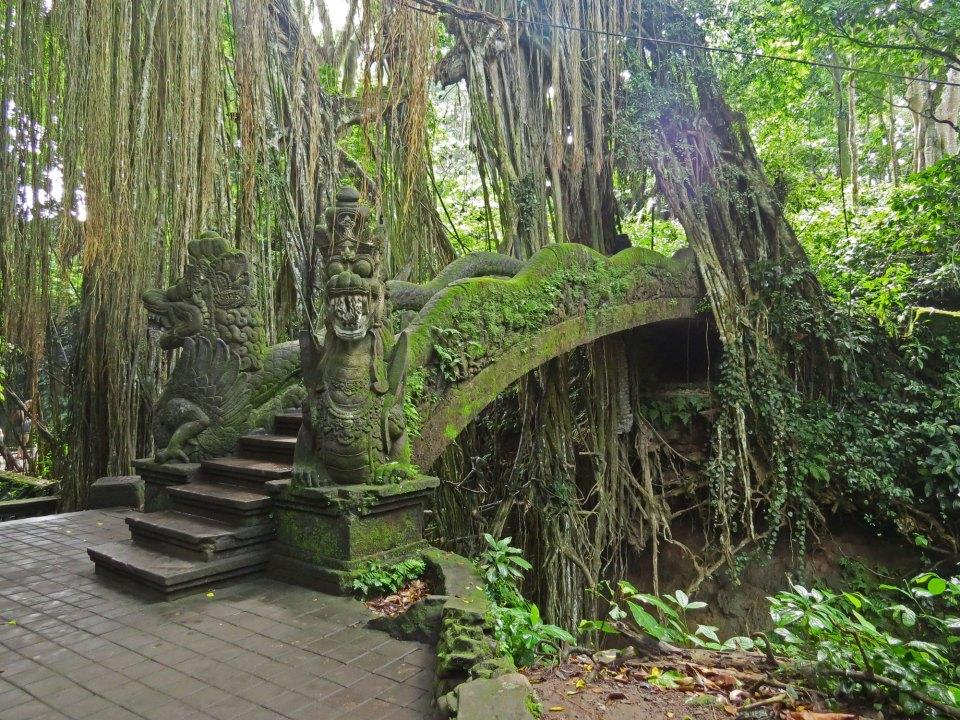 Monkeyforest Ubud Indonesië