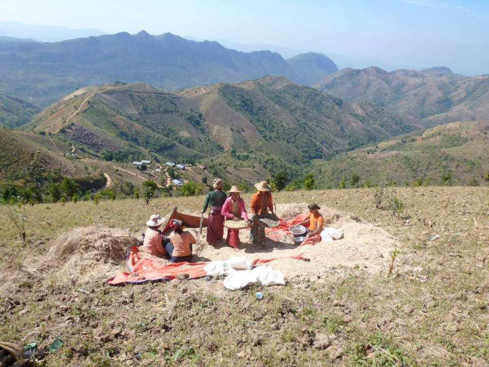 trekking rond Kalaw Myanmar