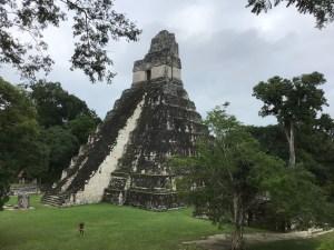 Maya tempels Tikal Guatemala