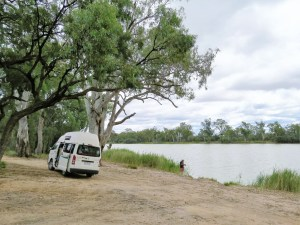 Merbein Free Camp Murray River Australië
