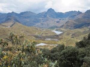 El Cajas NP Cuenca Ecuador