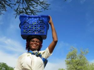 Fruit kopen in Zimbabwe
