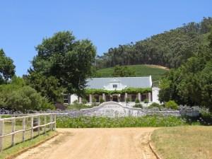 Mont Rochelle Wijngaard Zuid-Afrika