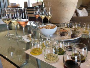 Wijn en olijfolie proeven Morgenster Zuid-Afrika