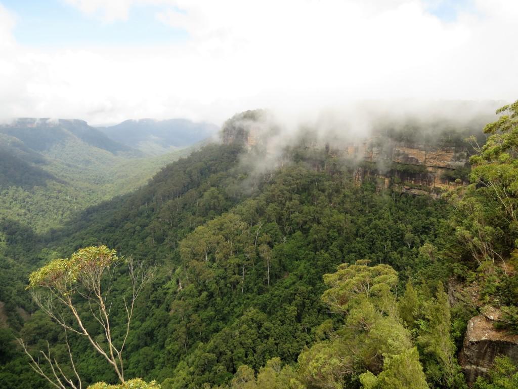Fitzroy-Falls-in-Australie