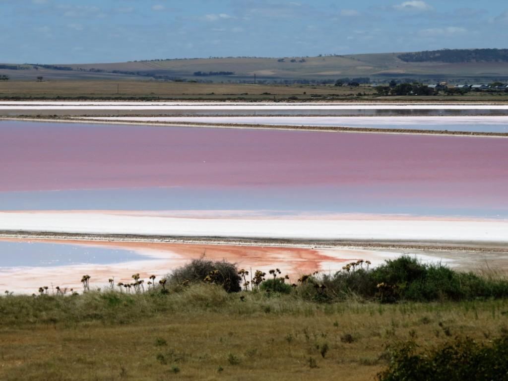 Salt-lake-zoutmeer-in-Australie