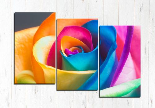Модульная картина Роза радуга