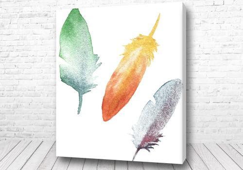 Постер Цветные перья
